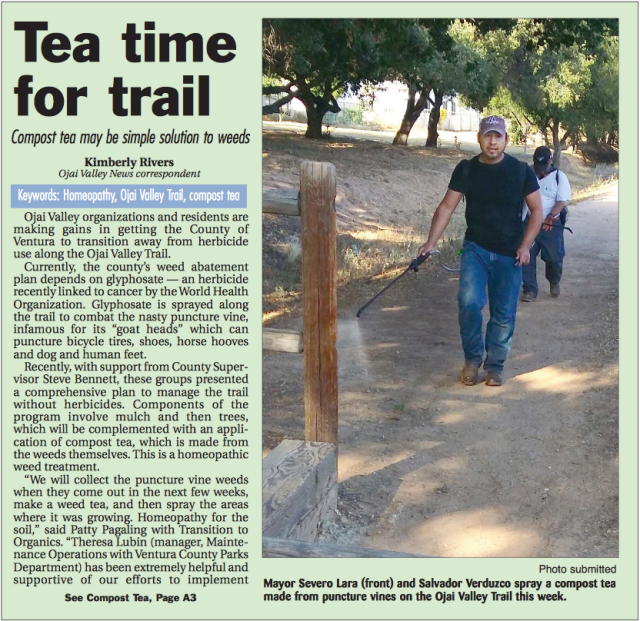 OVN article Tea time for trail 5 22 15